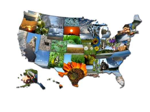 Photo collage of map of states of USA
